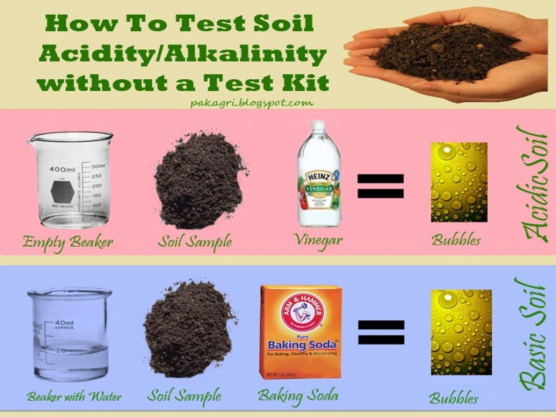 Προσδιορισμός του pH του εδάφους χωρίς τη χρήση του test kit