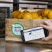 Walmart's Food Safety Solution Built on the IBM Blockchain Platform
